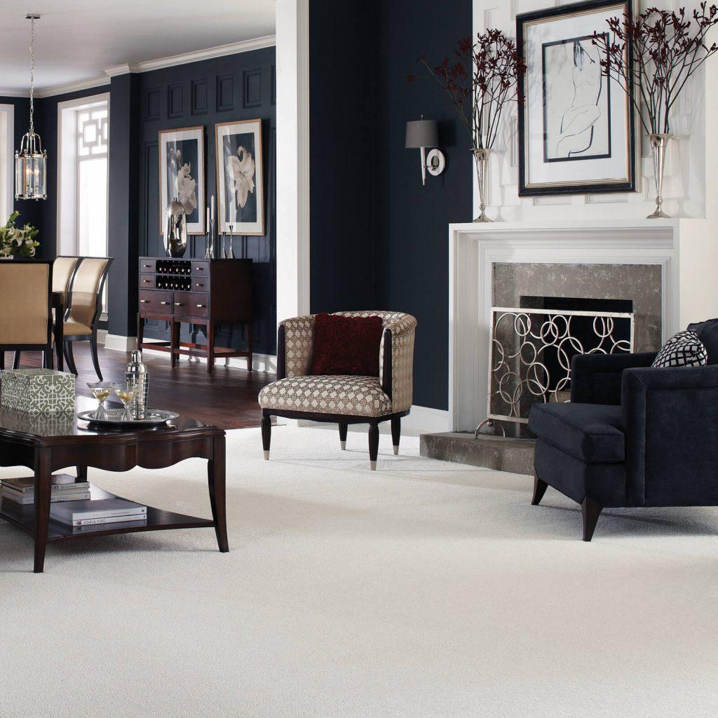 Living room grey Carpet | Reinhold Flooring