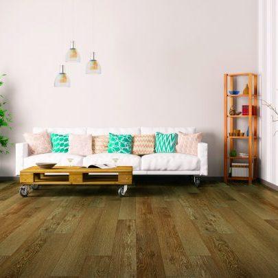 Interior of living room with sofa   Reinhold Flooring