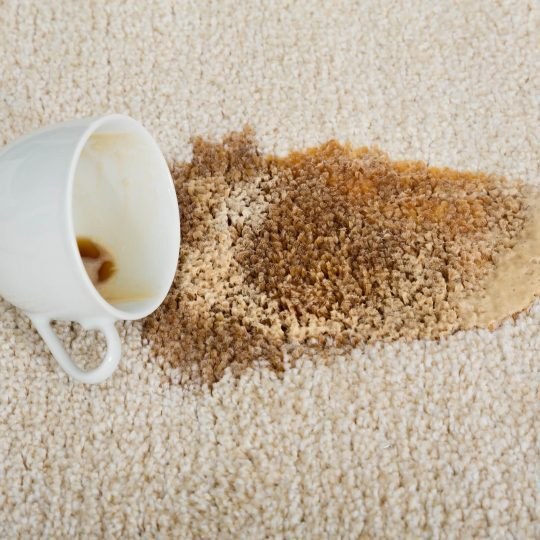 Tea stain on Carpet | Reinhold Flooring